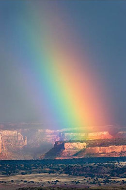 Desert Rainbow (Photo by Ken Lee)